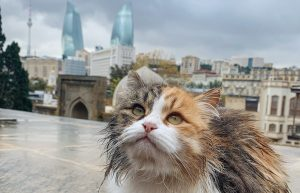 Baku, Azerbajdzsán